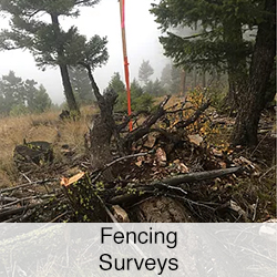 fencing surveys