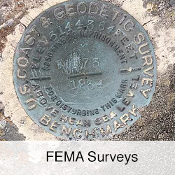 FEMA Surveys
