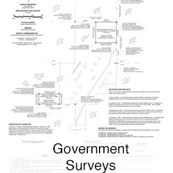 Government Surveys